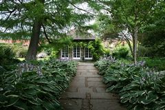 Hosta lined pathway. To brick cottage Royalty Free Stock Images