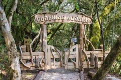 HOSTA, SOCHI ROSJA, WRZESIEŃ, - 21 2012: Wejście jest na trudnej Wycieczkuje trasie w boxwood gaju Kaukaz Zdjęcia Stock