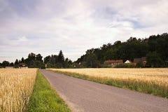 2016/07/07 Hostenice, Tjeckien - asfaltbana mellan fält som in leder till byn Hostenice i den regionCeske stredohorien Arkivfoton