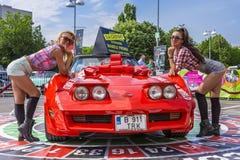 Hostess posing near Corvette car royalty free stock image