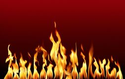 Hot. Orange fire flames in red background Stock Images