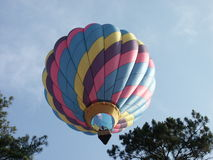 Hot air ballon. Over the trees Royalty Free Stock Images