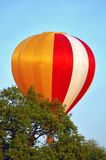 Hot air balloon. Flying above green trees Stock Image