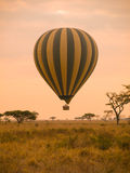Hot air balloon in Africa Royalty Free Stock Image