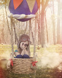Hot Air Balloon Childhood Adventure. A little child is sitting in a hot hair balloon basket pretending to fly in clouds looking at a butterfly for a creativity royalty free stock image