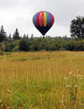 Hot air balloon field trees Stock Image