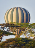 Hot air balloon in flight Stock Images