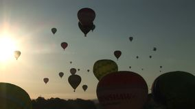 Balloons flying with the sun
