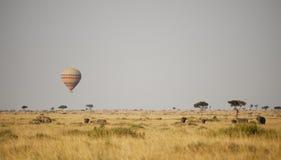 Hot air balloon in Kenya. Hot Air Balloon floating across the plains in the Masai Mara royalty free stock photos
