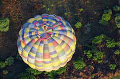 Hot air balloon over bushes Royalty Free Stock Photography