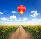 Hot air balloon over dirt road. Into yellow flower fields with clear blue sky Stock Photo