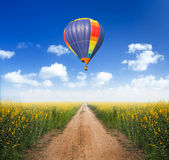 Hot air balloon over dirt road. Into yellow flower fields with clear blue sky Royalty Free Stock Image