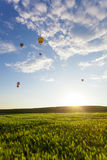 Hot air balloon over the field. With blue sky Stock Images
