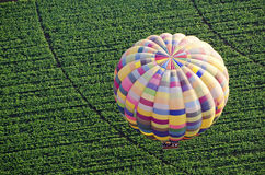 Hot air balloon over field Royalty Free Stock Photo