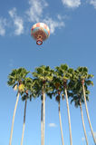 Hot air balloon over palm trees Royalty Free Stock Photos