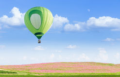 Hot air balloon over pink cosmos fields. With blue sky background Stock Photography