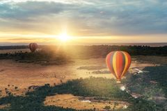 Hot Air Balloon Ride Over Masai Mara. Beautiful aerial view of colorful hot air balloons floating over the Masai Mara National Reserve at golden sunrise royalty free stock photography
