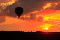 Hot air balloon in the sky Stock Images