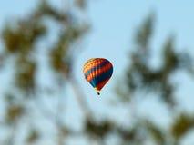 Hot Air Balloon through Tree Limbs. A hot air balloon is photographed through tree limbs in Phoenix, Arizona Royalty Free Stock Image