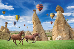 Hot air ballooning and two horses running in Cappadocia, Turkey. Royalty Free Stock Images