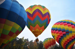 Hot air balloons. One hot air ballon taking flight over 3 other hot air balloons on the ground in a sunny day Royalty Free Stock Photos