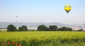 Hot Air Balloons Royalty Free Stock Image