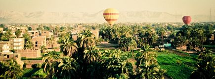 Hot air balloons above palm trees