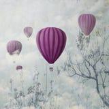 Pink Balloons Stock Photos
