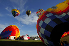 Hot Air Balloons Evening Launch Stock Images
