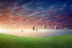 Hot air balloons fly in glowing sunset sky above green meadow Stock Image