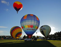 Hot Air Balloons Launch Sussex Royalty Free Stock Image