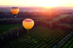 Hot air balloons over countryside. Stock Image
