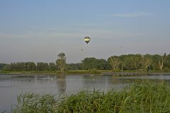 Hot air balloons over marshland Royalty Free Stock Photo