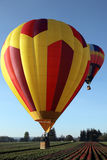 Hot air balloons over tulip  field Royalty Free Stock Photos