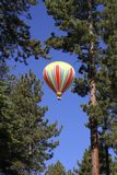 Hot Air - Blue Sky. Hot air ballon through the pine trees of Lake Tahoe royalty free stock photo