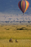 Hot air game drive Royalty Free Stock Image