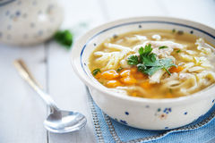 Hot and alible chicken soup Stock Images
