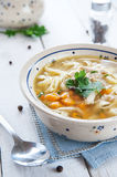 Hot and alible chicken soup Royalty Free Stock Photography