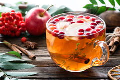 Hot apple cranberry cinnamon tea in glass cup on wooden table. Winter berry tea with cranberries, apple, cinnamon, lemon, honey and thyme in a glass cup on Stock Images