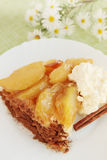 Hot apple pie Royalty Free Stock Photography