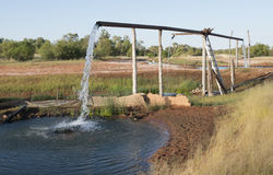 Hot artesian bore. In outback Queensland,Australia royalty free stock image