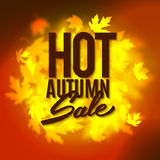 Hot autumn sale advertisement banner, vector illustration Royalty Free Stock Photos