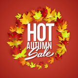 Hot autumn sale advertisement banner, vector illustration Royalty Free Stock Photo