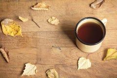 Hot autumn tea Stock Images