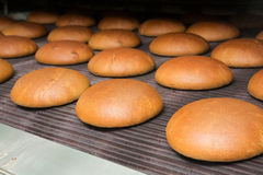 Hot baked bread loafs on a line Stock Photo