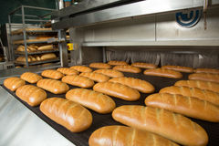 Hot baked breads on a line Stock Images