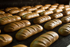 Hot baked breads on a line Royalty Free Stock Images