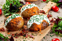 Hot Baked Potato with cheese, bacon, chives and sour cream. Stock Images