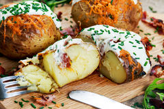 Hot Baked Potato with cheese, bacon, chives and sour cream. Stock Photos