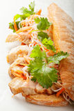 Hot banh mi sandwich with pork Royalty Free Stock Photography
